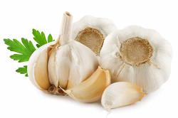 Чеснок для приготовления грибного соуса