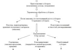 Схема технологического процесса выращивания вешенки