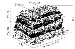 Схема компоста для выращивания шампиньонов