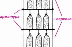 Схема размещения грибных блоков