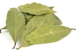 Сушёный лавровый лист