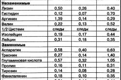 Таблица содержания аминокислот в вешенках