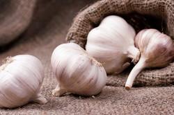 Чеснок для маринования грибов