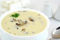 Готовый суп из подосиновиков