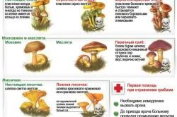 Как определить ядовитые грибы при варке