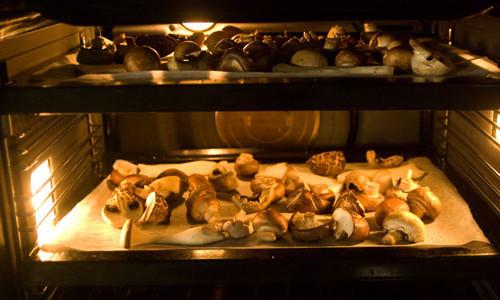 сушка грибов в домашних условиях в микроволновке