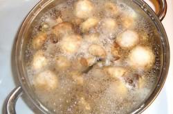 Варка грибов